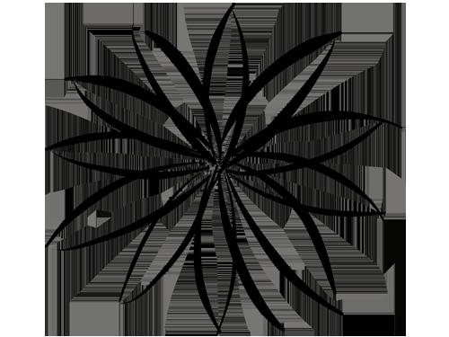 grafikdesign köln grafiker mona marzouk-scholz